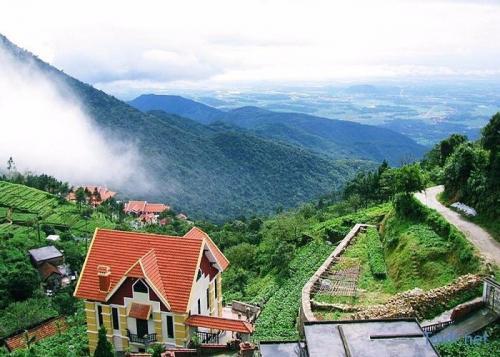 tam_dao_Belvedere_Resort